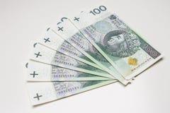 Mycket polska pengar på vit Royaltyfria Bilder