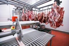 Mycket rått kött hängde och ordnade i rad i en bearbeta fabrik för köttproduktion den konstnärliga detaljerade eiffel ramen franc royaltyfri fotografi