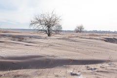 Mycket smutsig snö som resultat av stark vind Royaltyfri Bild