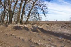 Mycket smutsig snö som resultat av stark vind Royaltyfri Foto
