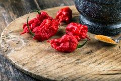 mycket starkt varm peppar Carolina Reaper Royaltyfri Bild