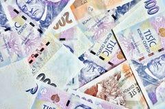 Mycket tjeck krönar sedlar Royaltyfria Foton
