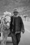 Mycket uttrycksfull bonde med hans härliga vita häst Arkivfoton