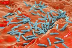 Mycobacterium tuberculosis dei batteri illustrazione di stock