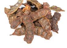 Mydlany strąk na białym tle - Akacjowy concinna (Willd ) DC Obrazy Stock