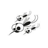 Mygga på vit bakgrund Arkivbild