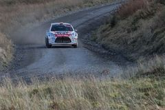 A car racing on the Myherin Rally track in Wales. Royalty Free Stock Images