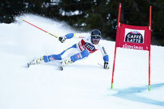 MYHRER Andre in Audi Fis Alpine Skiing World-Schale Men's riesiges S lizenzfreie stockbilder