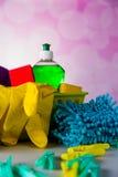 Myje i czyści wyposażenie, czyści set Obrazy Royalty Free