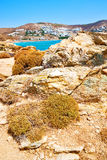 In  the mykonos island rock sea and  blue   sky Stock Images