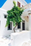 Mykonos old town street. Beautiful whitewashed cycladic street inl Mykonos island old town, Cyclades, Greece Stock Photography