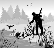 Myśliwy kaczki polowanie Mężczyzna z pistoletem zakłada pod krzak rodziną kaczki Okaleczająca kaczka z kaczątkami Lasowy jezioro  Zdjęcia Stock