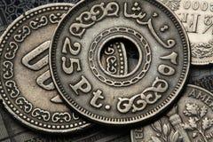 Mynt av Egypten Royaltyfri Foto