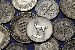 Mynt av Förenadeen Arabemiraten Royaltyfri Foto