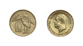 Mynt av Fiji Arkivfoton