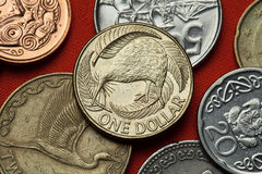 Mynt av Nya Zeeland Kiwi- och silverormbunke Arkivbilder