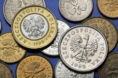 Mynt av Polen Arkivfoton