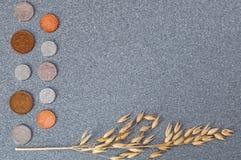 Mynt av Storbritannien och ett öra av korn på en bakgrund av grå granit royaltyfria foton