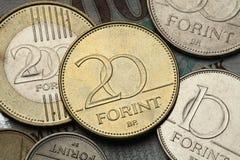 Mynt av Ungern Royaltyfria Bilder