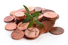 Mynt för eurocent och grön grodd Arkivfoton