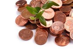Mynt för eurocent och grön grodd Arkivfoto