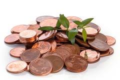 Mynt för eurocent och grön grodd Fotografering för Bildbyråer