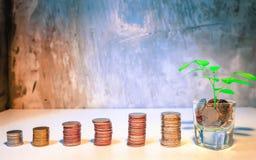 Mynt för pengarbesparingidéer mot efterkrav som växer upp Mynt i glass bottl arkivbild
