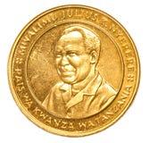 Mynt för tanzanisk shilling 100 Fotografering för Bildbyråer