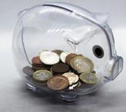Mynt i en spargris, ett svin fotografering för bildbyråer