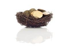 Mynt i fågelrede Royaltyfria Bilder