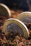 Mynt i jord royaltyfri fotografi