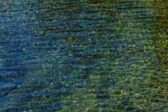 Mynt i springbrunnrefraktioner - blått & gräsplan Arkivfoton