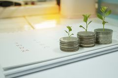 Mynt med trädet i aktieandelsfondbegrepp fotografering för bildbyråer