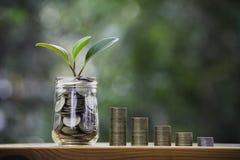 Mynt med växten överst som sätter på trä för sparande växande begrepp för finans på mörk bakgrund royaltyfria bilder