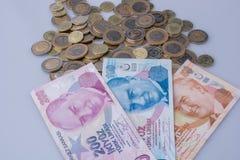 Mynt och sedlar för turkisk Lira sid - förbi - sidan Royaltyfri Fotografi