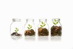 Mynt och växt i flaska, tillväxt för affärsinvestering och besparingbegrepp royaltyfria bilder