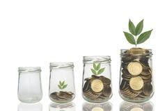 Mynt och växt i flaskan, tillväxt för affärsinvestering royaltyfria foton