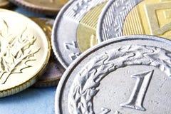 mynt polerar zloty Royaltyfri Bild