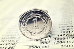 mynt polerar zloty Royaltyfri Fotografi