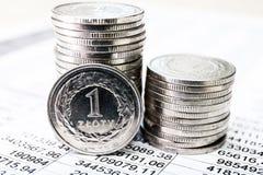 mynt polerar zloty Arkivfoton
