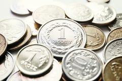 mynt polerar zloty Arkivfoto