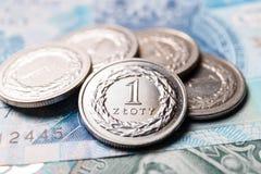 mynt polerar zloty Royaltyfri Foto