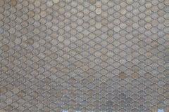 Myntar bakgrundskopecken Royaltyfri Bild