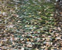 Myntar längst ner av en springbrunn Royaltyfria Foton