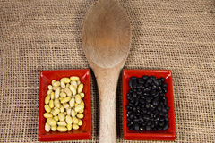Myocoba bean and black bean with a wooden spoon in Japanese serving dishes. Stock Image