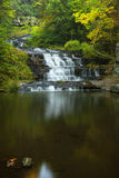 Myosotis Falls Stock Photo