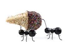 myror som bär sädes- kottekrämis royaltyfria foton