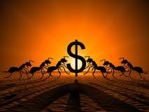 Myror som rymmer dollaren Arkivfoton