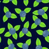 Myrtille photos libres de droits