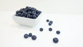 Myrtille bleue Photographie stock